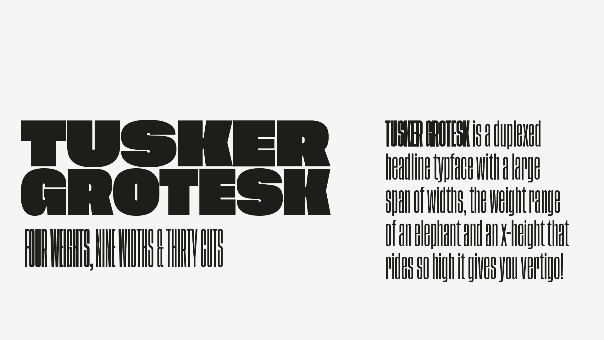 Tusker Grotesk font family designed by Lewis McGuffie, now available from www.typeverything.com