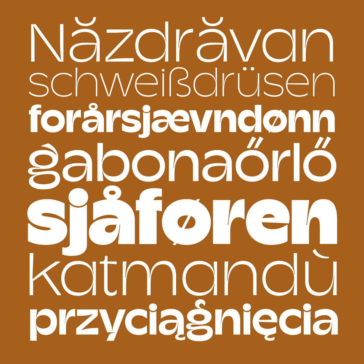 Champ, a new typeface by Cristi Bordeianu and Andrei Robu available on www.typeverything.com